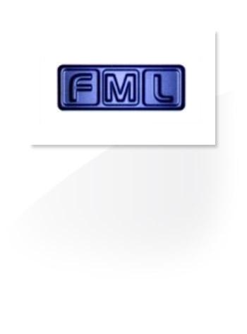 FML case study box